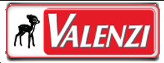 valenzi_logo